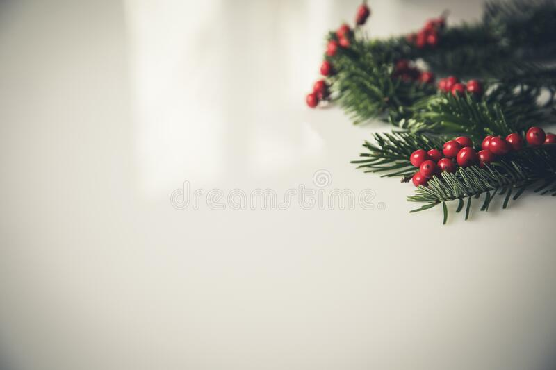 Christmas Holly Beside White Painting Concrete Wall Free Public Domain Cc0 Image