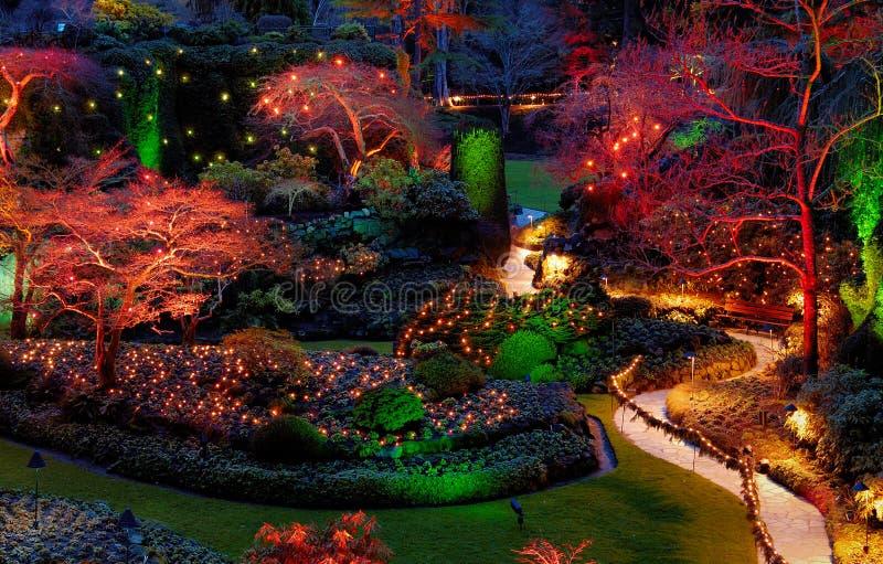 Christmas illumination in the garden stock image