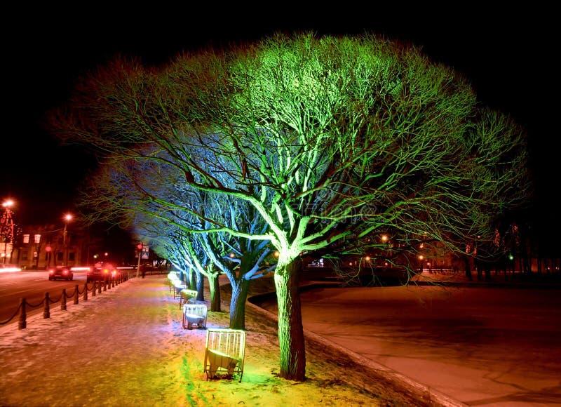 Christmas illumination of street. Christmas illumination of trees in the street stock image