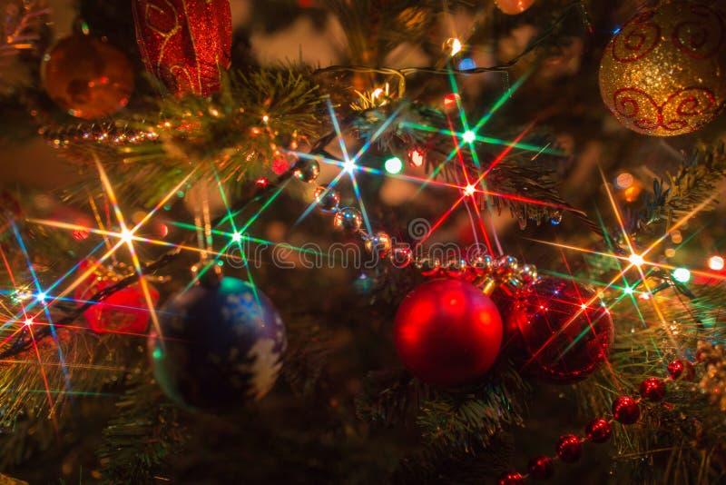 Christmas illuminations. Christmas lights on the Christmas tree royalty free stock image
