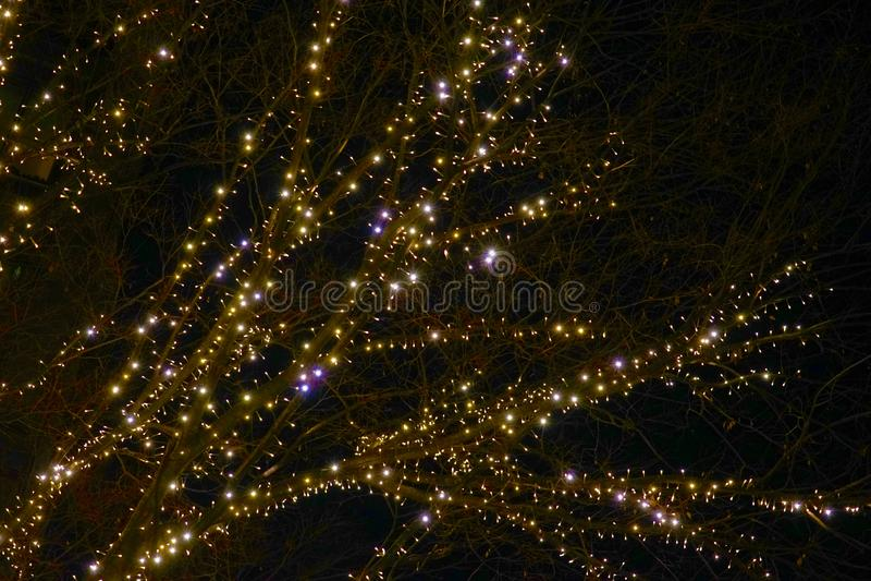 Christmas illuminations. Shooting location : Tokyo metropolitan area royalty free stock image
