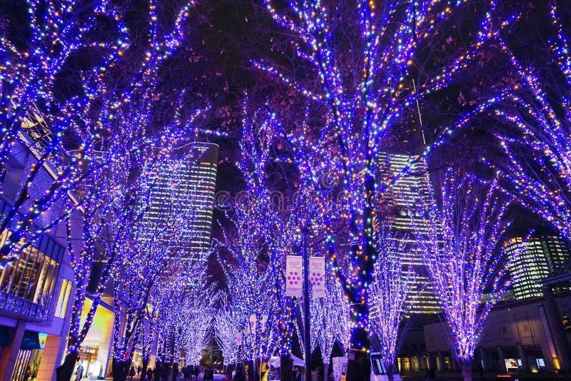 Christmas illuminations. Shooting location : Yokohama-city kanagawa prefecture stock photography