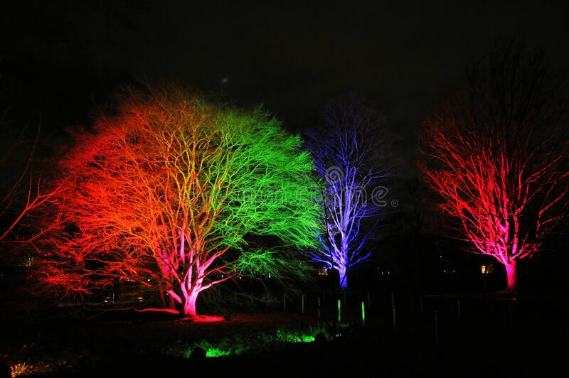 Christmas at Kew is a magical light trail across Kew Gardens making the perfect festive winter evening event. Brand new trail to illuminate the magnificent stock photos