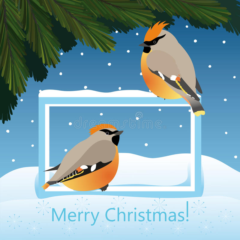 Christmas landscape with fir and birds waxwing vector illustration