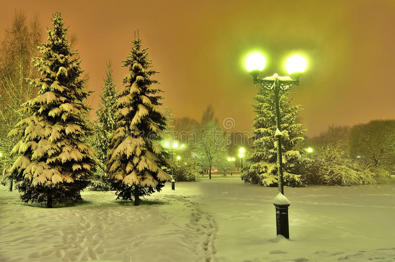 Download Christmas Landscape In The Glow Of Lanterns Stock Photo   Image Of  Nature, Footpath
