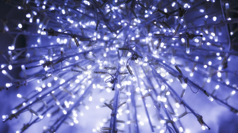 Download Christmas Lighting In The Park Stock Image - Image of light, evening: 83716551