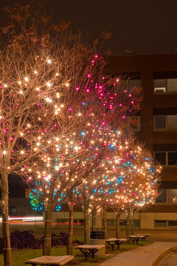 Free Christmas Lights Royalty Free Stock Photography - 1548487