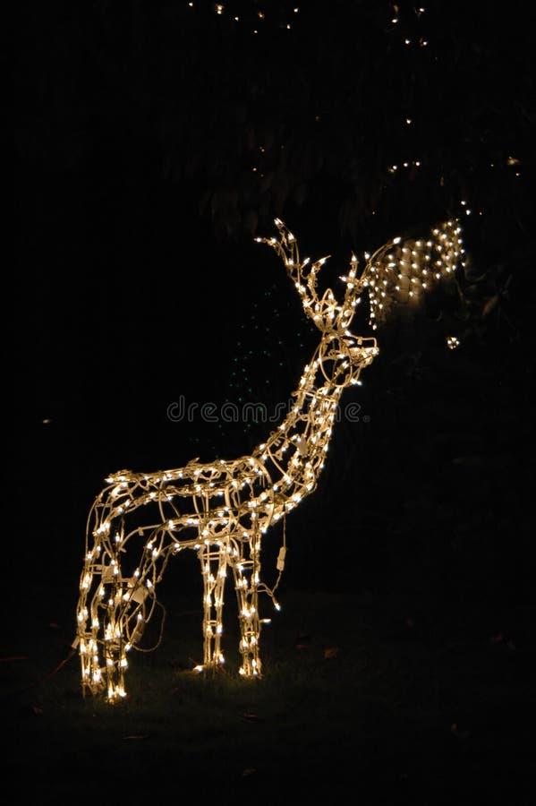 Download Christmas lights στοκ εικόνες. εικόνα από διακοσμήσεις - 387246
