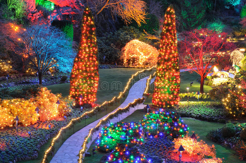 Christmas lights in butchart gardens stock images