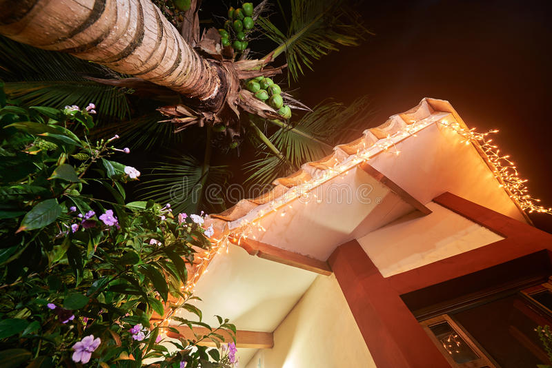 Christmas lights on house. With coconut palm tree lower view stock photo