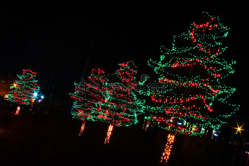 Christmas Lights - Red And Green Trees Stock Image - Image ...