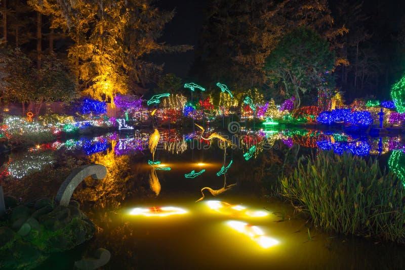 Christmas Lights reflection stock photography