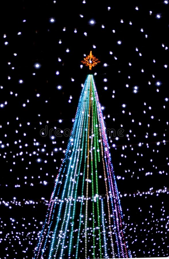 Christmas lights. Rnnight with christmas lights in Merida, mexico royalty free stock photos