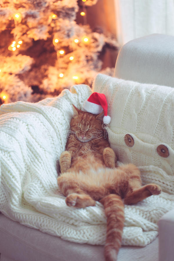Download Christmas stock photo. Image of furniture, lights, comfort - 47525834