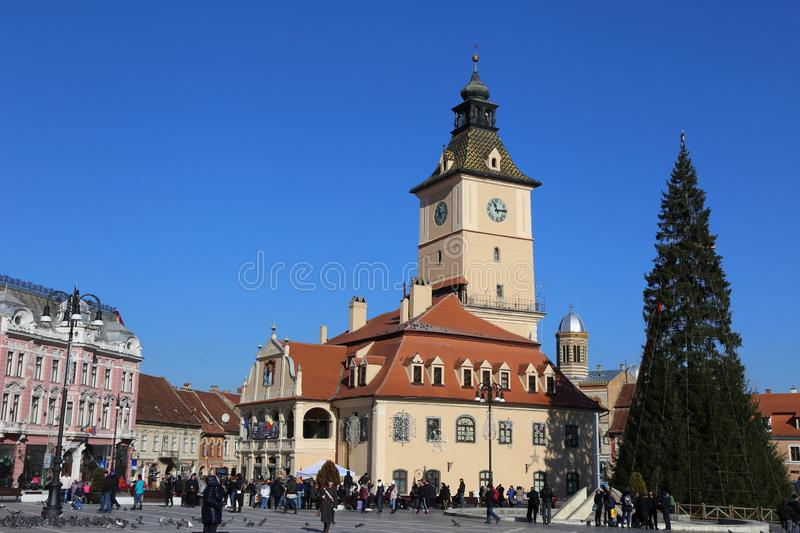 Christmas Market, Brasov, Romania - huge fir royalty free stock photography