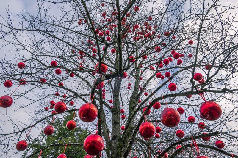 Christmas Market Hellbrunn Palace, Salzburg, Austria. Tree with big red balls at Christmas Market, Christkindlmarkt Hellbrunn Palace, Hellbrunn Advent Magic royalty free stock images