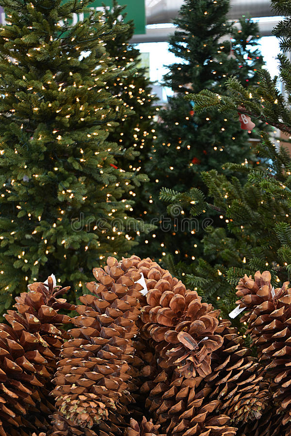 Christmas Merchandise Display royalty free stock images