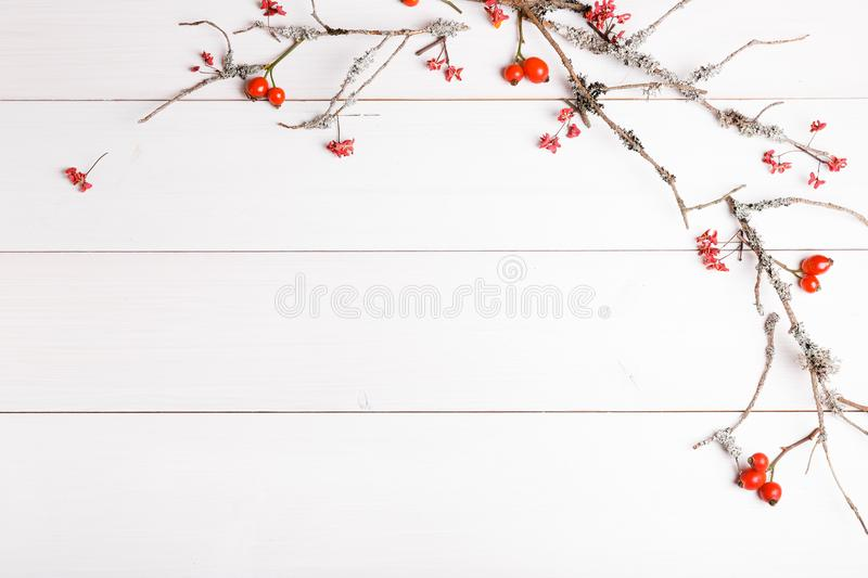 Christmas, New Year or Autumn background, flat lay composition of Christmas natural ornaments and fir branches, berries, rose hips stock images
