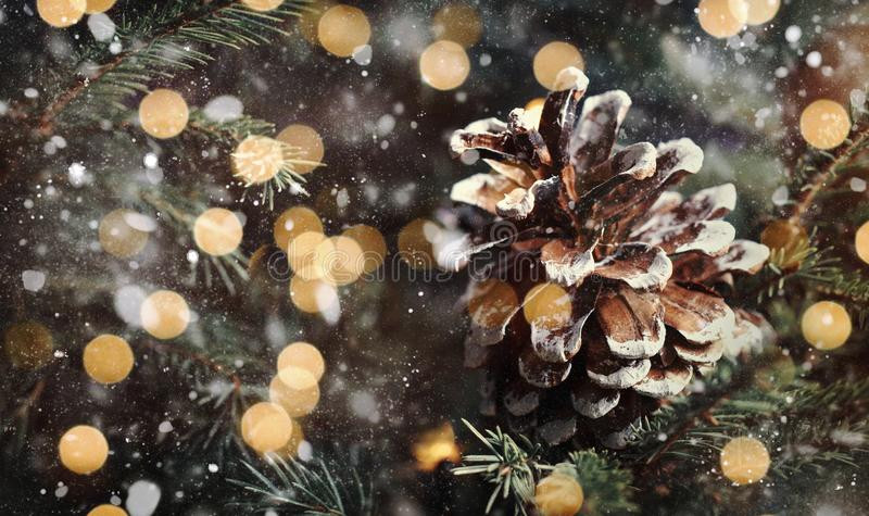Christmas or New Year blurred snow background with festive fir tree and pine cones, selective focus royalty free stock photography