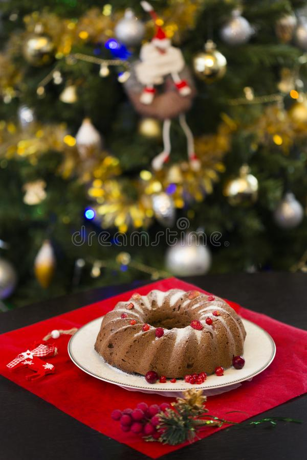Christmas or New Year chocolate cake with powdered sugar on the top, fresh red berries on white porcelain plate royalty free stock photos