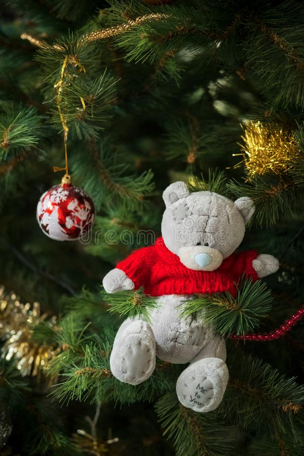 Christmas and new year decoration grey bear in a red wool sweater. And the inscription on the paw on the pine stock photography