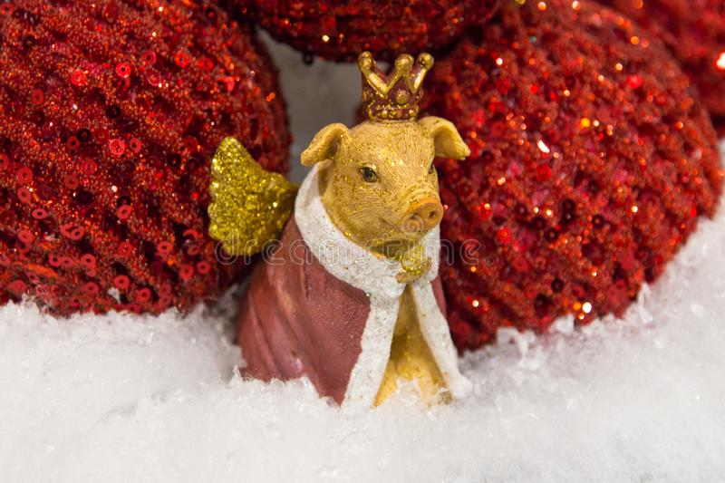 Christmas, new year decoration golden yellow pig with wings in the crown close up. Christmas, new year decoration. Statuette, figurine of golden yellow pig with stock photo