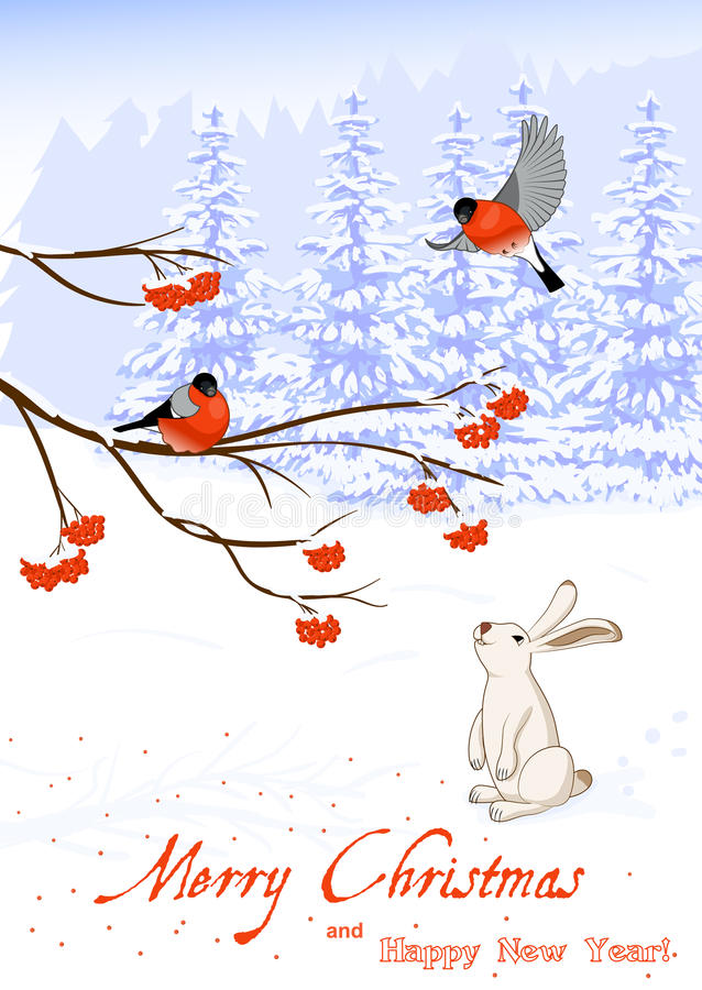 Christmas and New Year Greeting Card with Bullfinch Birds on a Rowan Tree Branch and White Hare collect berries in vector illustration