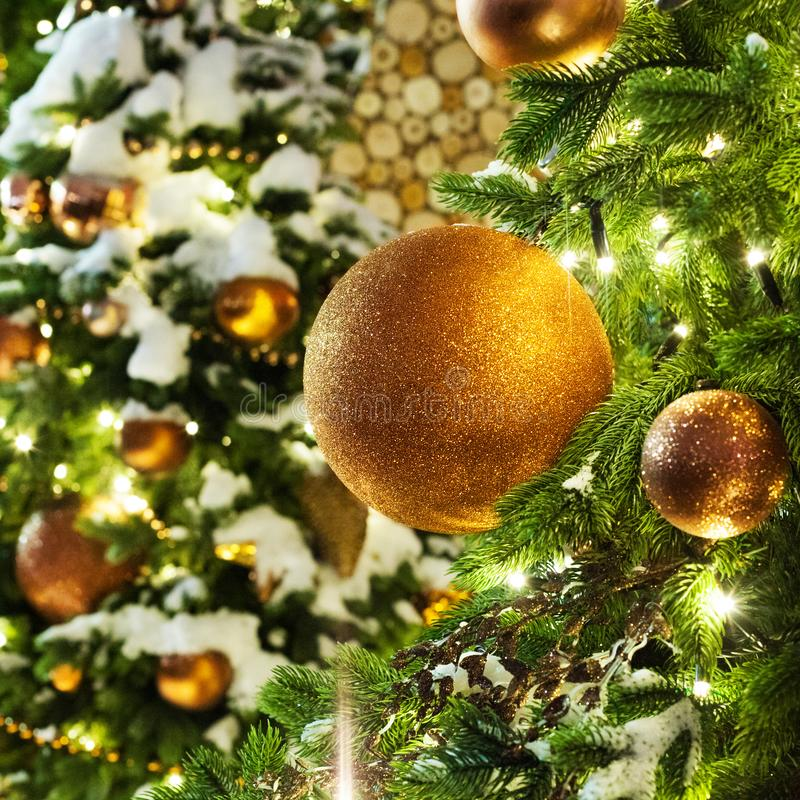Christmas or New Year greeting card, golden christmas decorations glass balls, green pine branches, white snow and shiny lights stock image