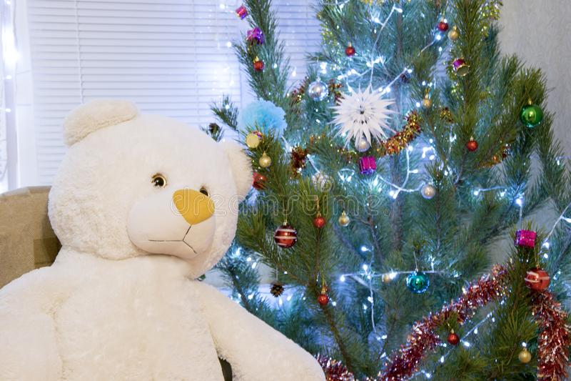 Christmas and New Year present. Huge teddy bear sitting at decorated pine tree royalty free stock images