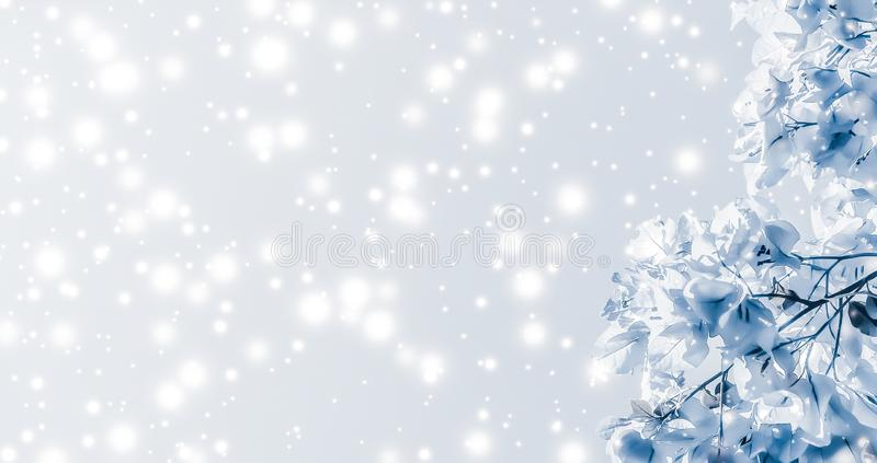 Christmas, New Years blue floral nature background, holiday card design, flower tree and snow glitter as winter season sale. Magical, branding and festive royalty free stock photos