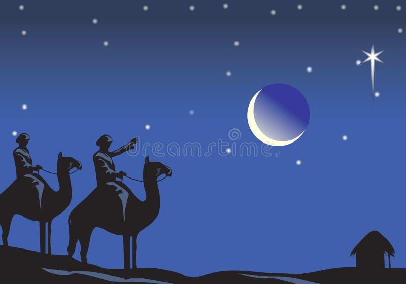 Christmas night vector illustration