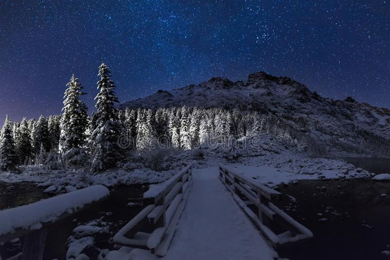 Winter clear starry night royalty free stock image