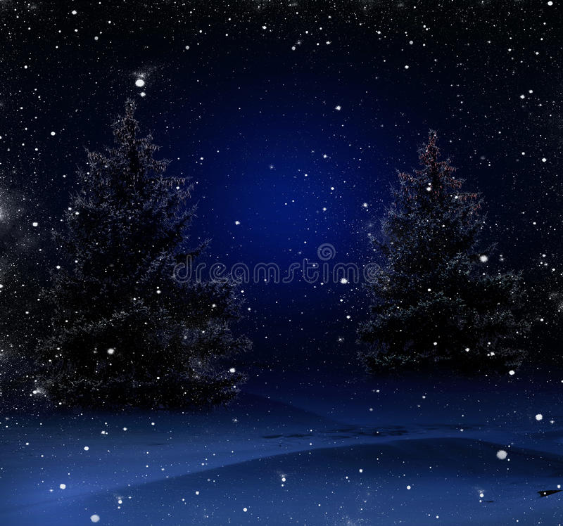 Download Christmas Night In The Woods Stock Photo - Image: 27877226