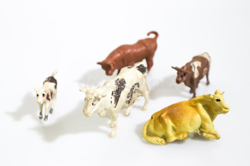 Christmas objects, plastic animals cow for nativity diorama isolated in a white background stock image