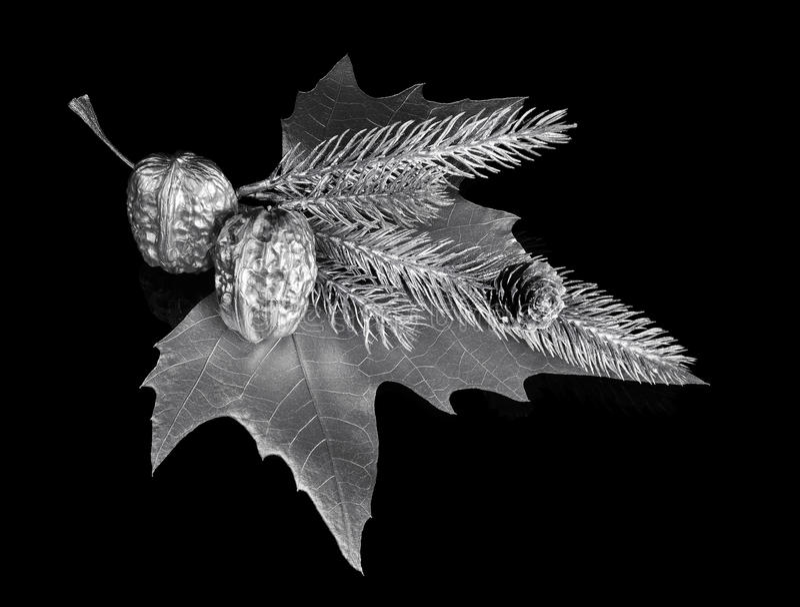 Download Christmas ornament stock image. Image of ornament, pleasure - 21755923