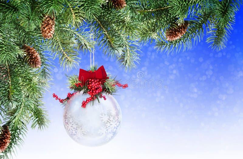 Download Christmas ornament stock image. Image of framing, pine - 22388381