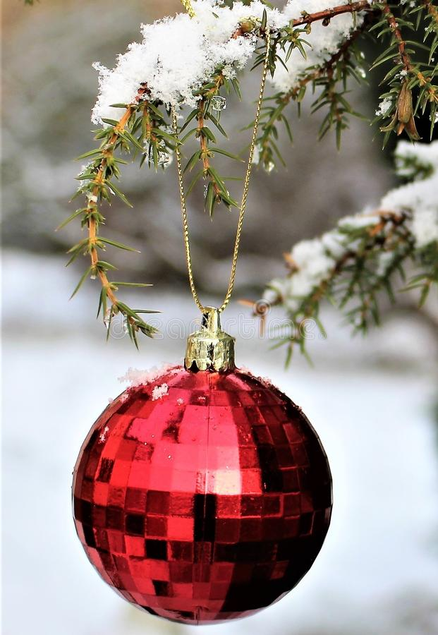 Christmas Ornament, Christmas Decoration, Christmas, Tree Free Public Domain Cc0 Image