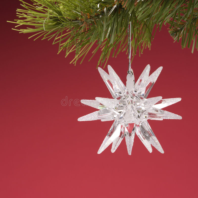 Christmas ornament hanging from branch. stock photos