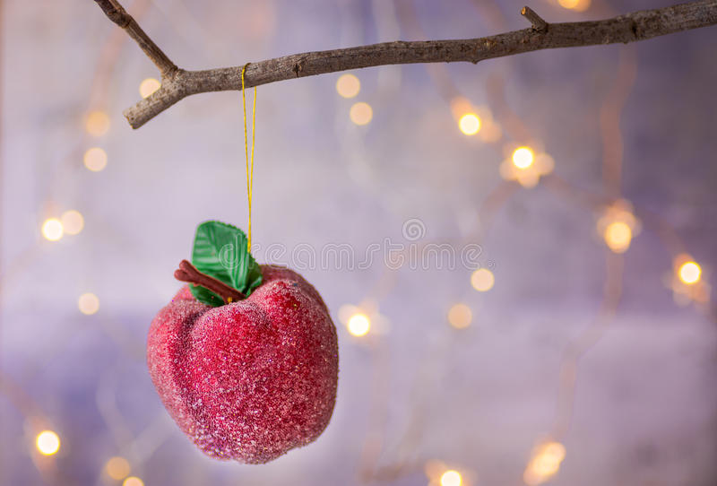 Christmas ornament red sugar coated candy apple hanging on dry tree branch. Shining garland golden lights. Beautiful background. Christmas ornament red sugar stock photography