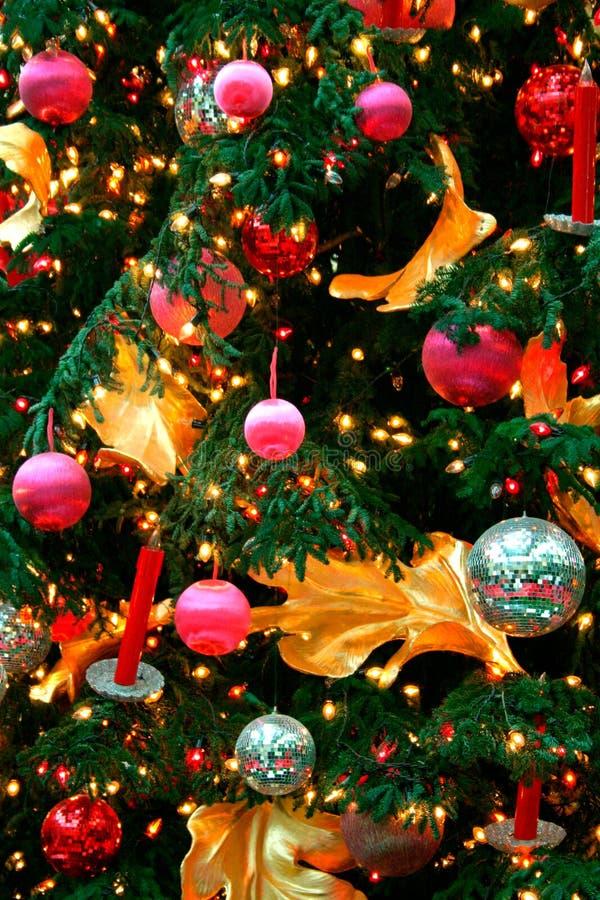 Christmas Ornaments. On a Christmas tree stock photography
