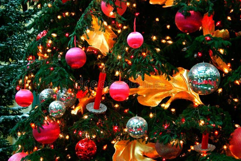 Christmas Ornaments. On a Christmas tree stock photos