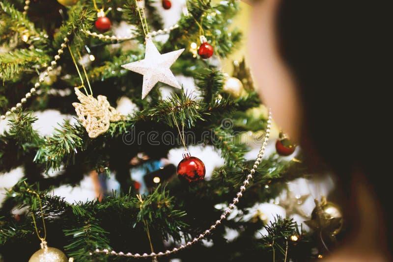 Christmas Ornaments On Tree Free Public Domain Cc0 Image