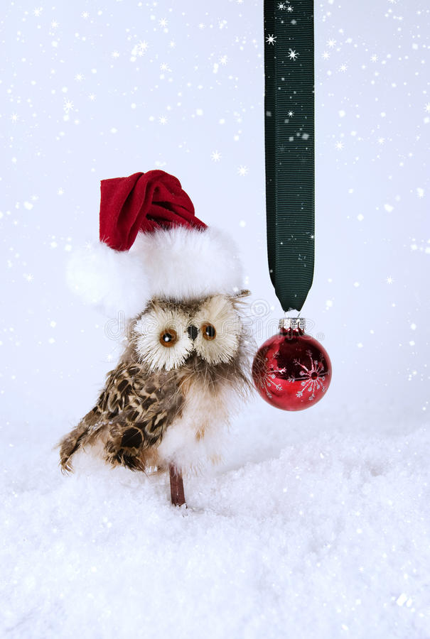 Christmas Owl with Santa Hat