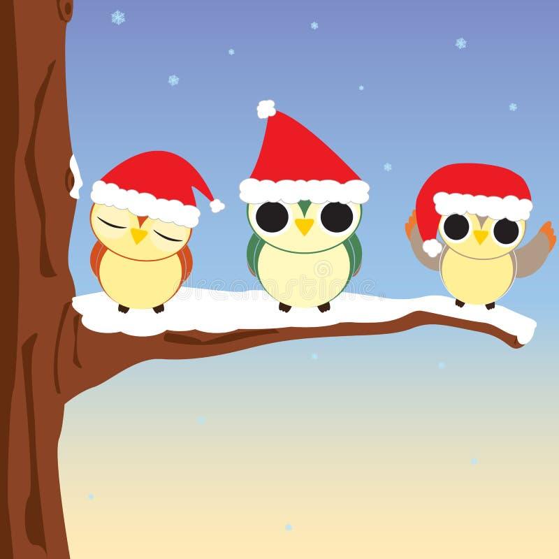 Christmas Owls Stock Image