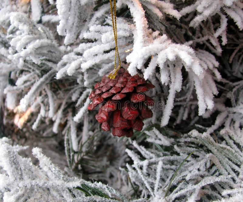Christmas painted in red color pine cone stock images