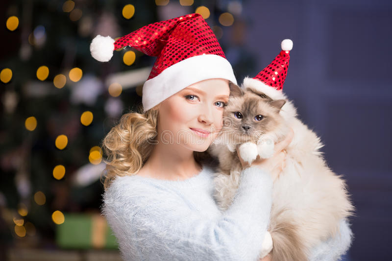 Christmas party, winter holidays woman with cat. New year girl. Christmas tree in interior background royalty free stock images