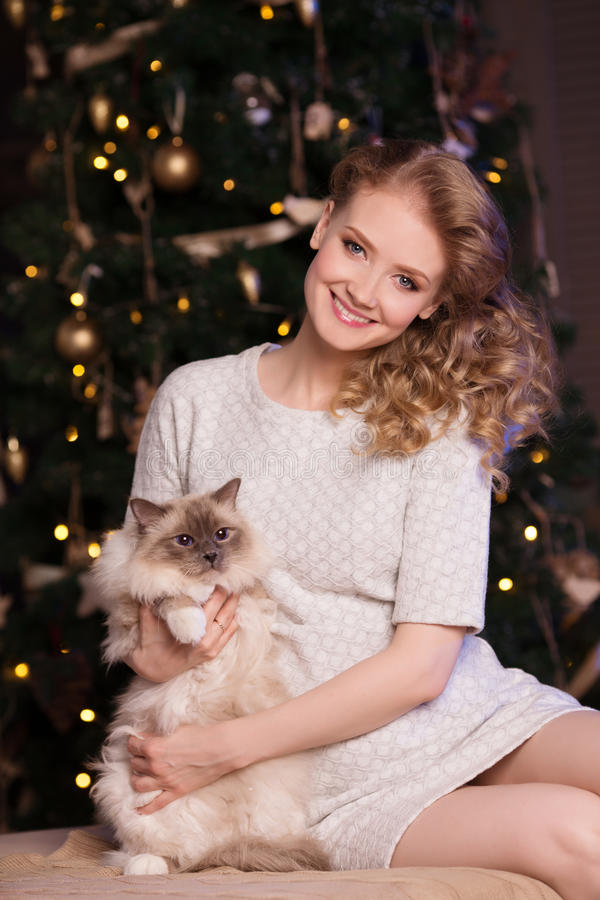Christmas party, winter holidays woman with cat. New year girl. Christmas tree in interior background royalty free stock photo