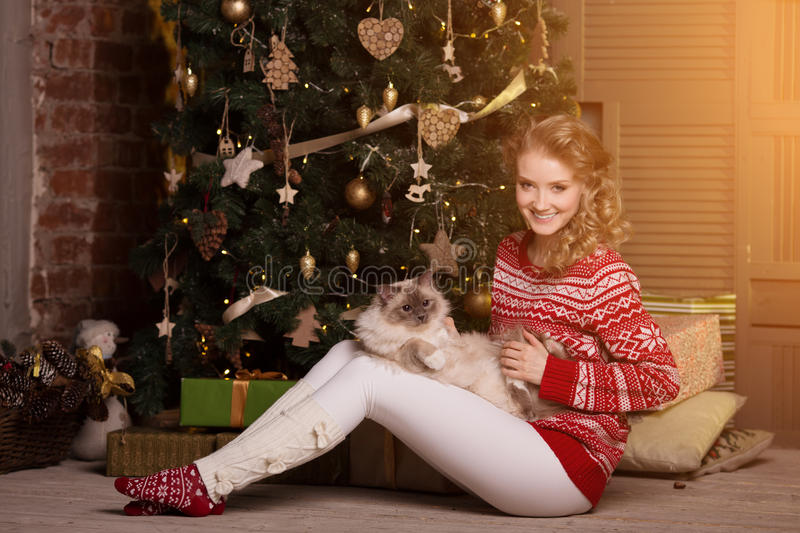 Christmas party, winter holidays woman with cat. New year girl. Christmas tree in interior background royalty free stock photography