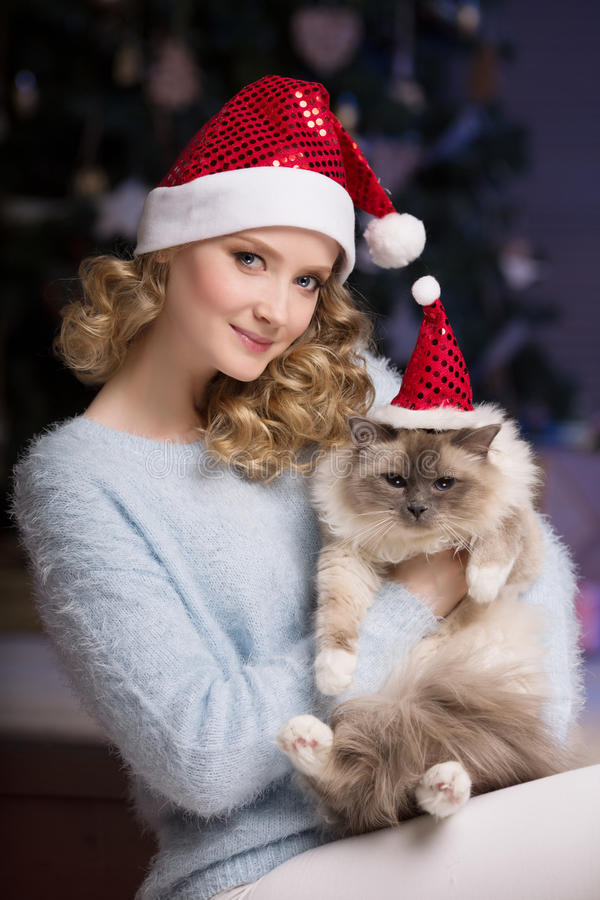 Christmas party, winter holidays woman with cat. New year girl. Christmas tree in interior background royalty free stock photos