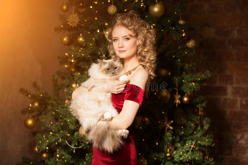 Christmas party, winter holidays woman with cat. New year girl. Christmas tree in interior background stock photography